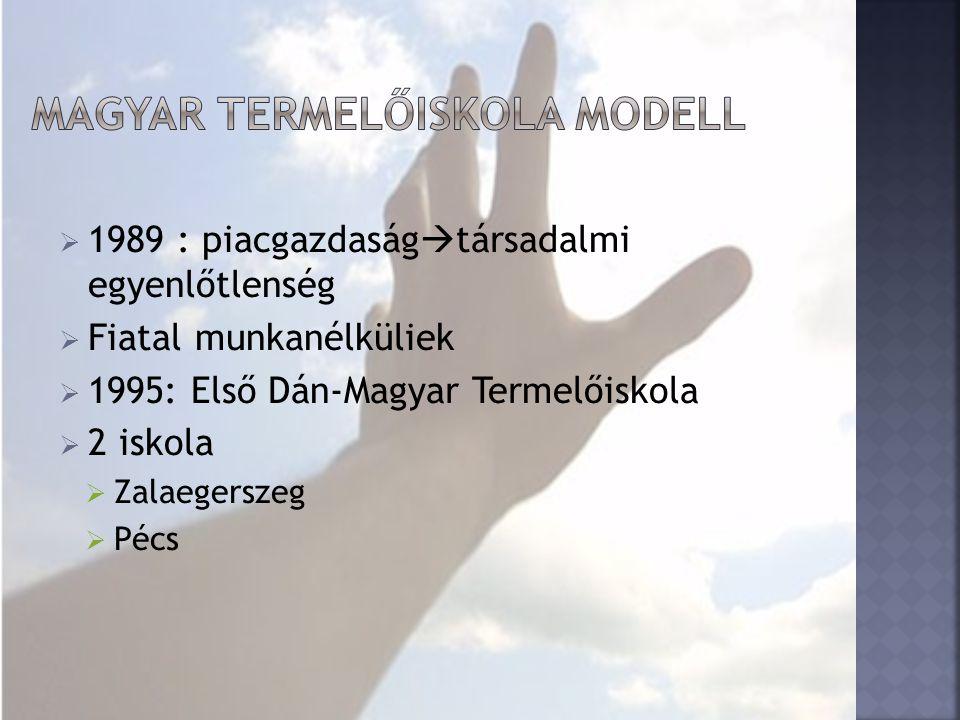  1989 : piacgazdaság  társadalmi egyenlőtlenség  Fiatal munkanélküliek  1995: Első Dán-Magyar Termelőiskola  2 iskola  Zalaegerszeg  Pécs