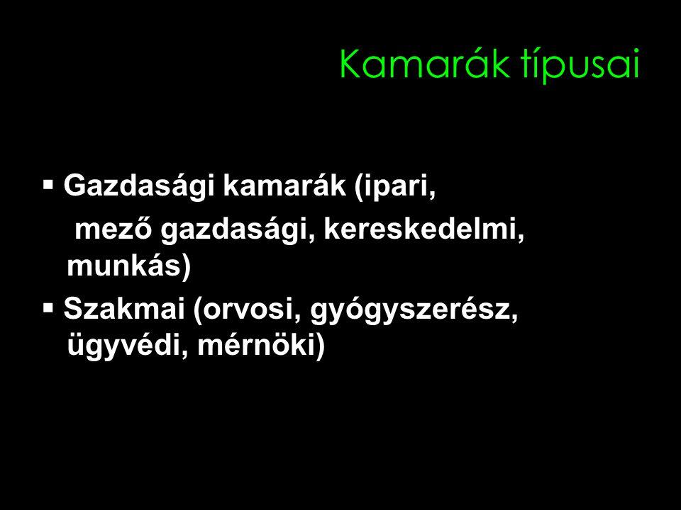18 Kamarák típusai  Gazdasági kamarák (ipari, mező gazdasági, kereskedelmi, munkás)  Szakmai (orvosi, gyógyszerész, ügyvédi, mérnöki)