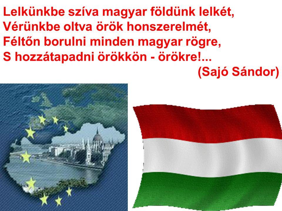 Lelkünkbe szíva magyar földünk lelkét, Vérünkbe oltva örök honszerelmét, Féltőn borulni minden magyar rögre, S hozzátapadni örökkön - örökre!... (Sajó