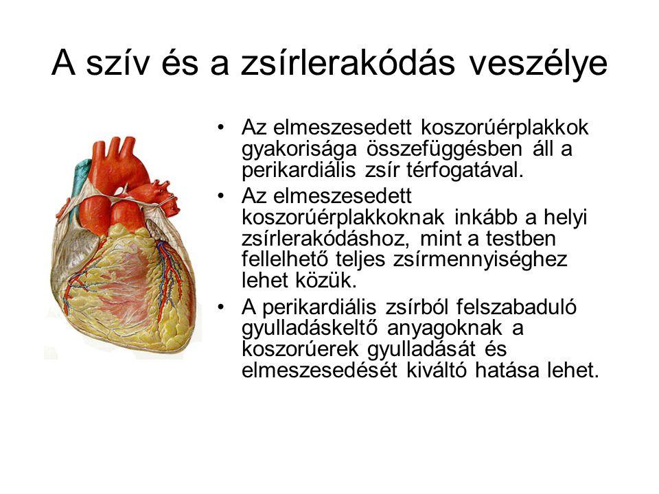 A szív és a zsírlerakódás veszélye Az elmeszesedett koszorúérplakkok gyakorisága összefüggésben áll a perikardiális zsír térfogatával. Az elmeszesedet