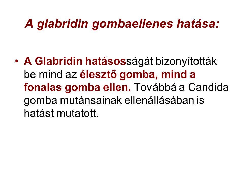 A glabridin gombaellenes hatása: A Glabridin hatásosságát bizonyították be mind az élesztő gomba, mind a fonalas gomba ellen. Továbbá a Candida gomba