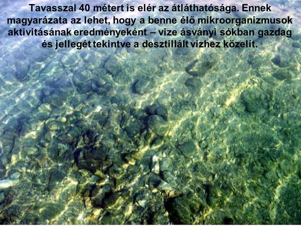 Tavasszal 40 métert is elér az átláthatósága. Ennek magyarázata az lehet, hogy a benne élő mikroorganizmusok aktivitásának eredményeként – vize ásvány