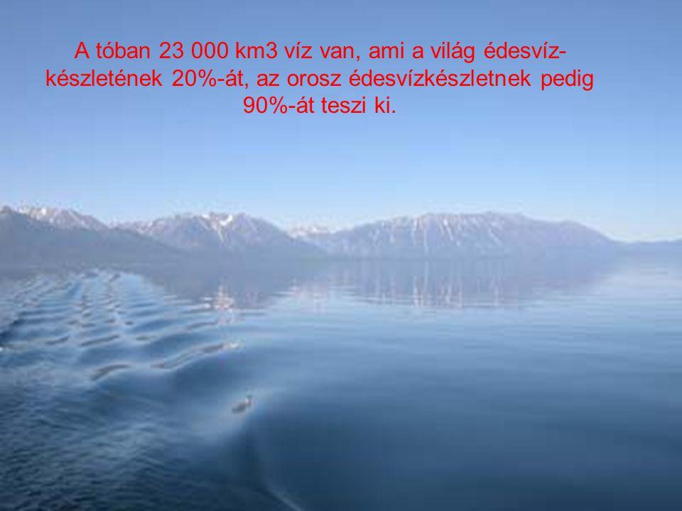 A tóban 23 000 km3 víz van, ami a világ édesvíz- készletének 20%-át, az orosz édesvízkészletnek pedig 90%-át teszi ki.