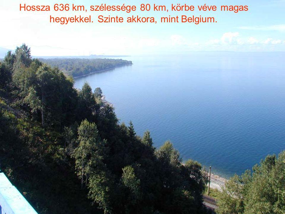 Hossza 636 km, szélessége 80 km, körbe véve magas hegyekkel. Szinte akkora, mint Belgium.
