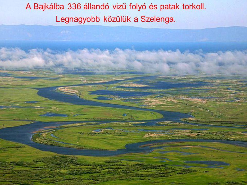 A Bajkálba 336 állandó vizű folyó és patak torkoll. Legnagyobb közülük a Szelenga.