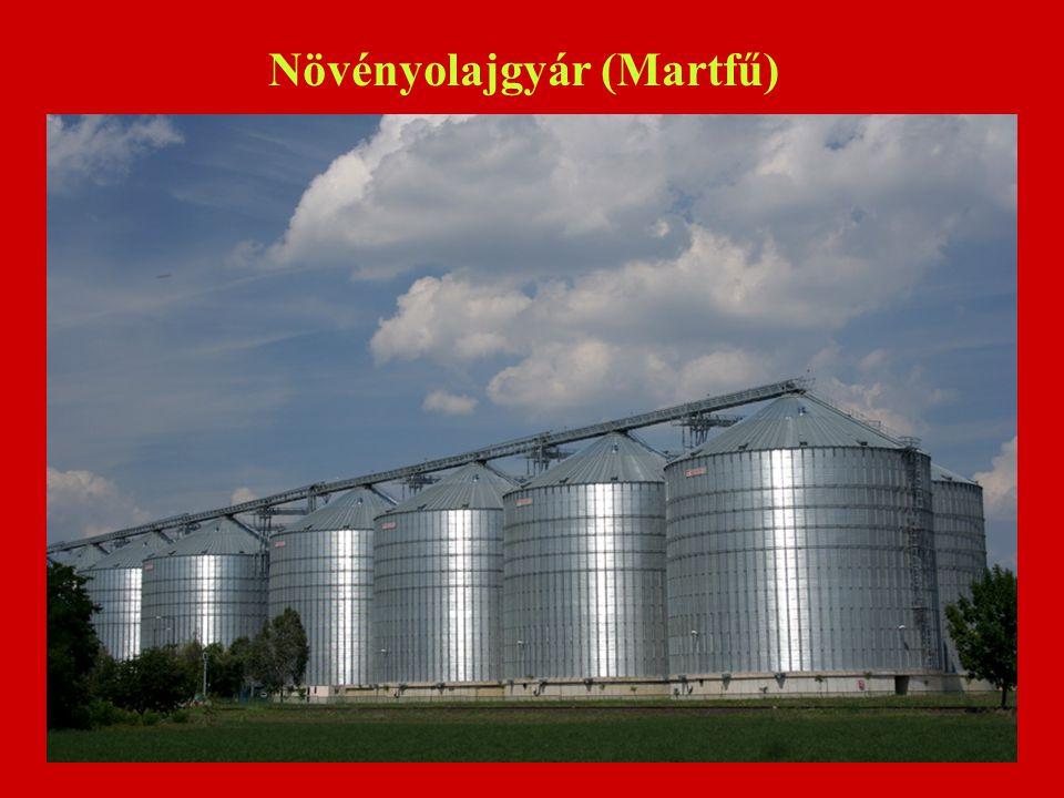 Növényolajgyár (Martfű)