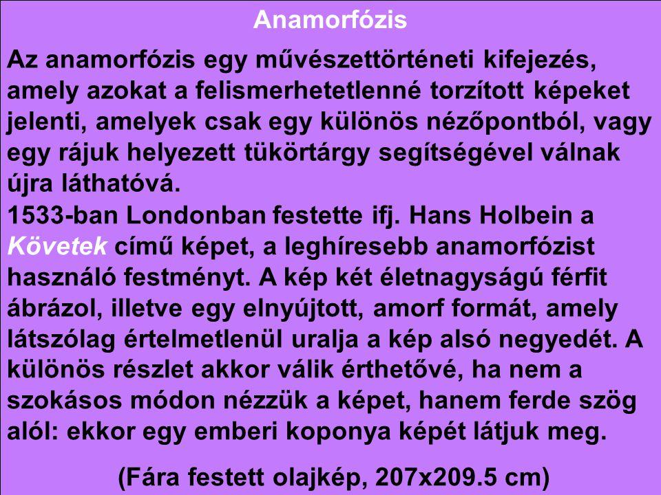 Anamorfózis Az anamorfózis egy művészettörténeti kifejezés, amely azokat a felismerhetetlenné torzított képeket jelenti, amelyek csak egy különös néző