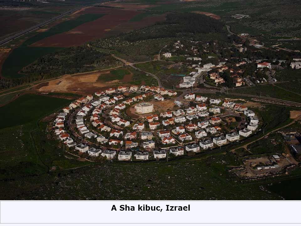 A Sha kibuc, Izrael