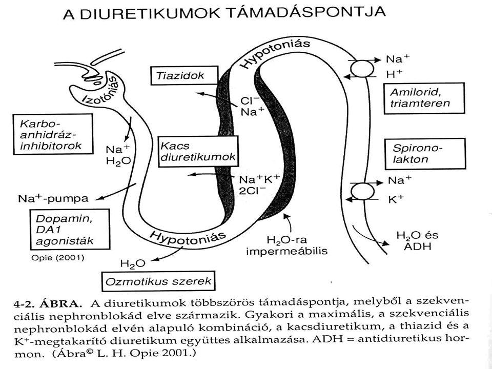 Problémák: túlzott vízhajtás ACE-gátló a kockázatot fokozza tünetek egyéni adagolás (mérleg) hyponatraemia súlyos KE-ben ACE-gátló+furosemid diuretikum rezisztencia aldoszteron okozta hypertrophiát a thiazodok gátolják