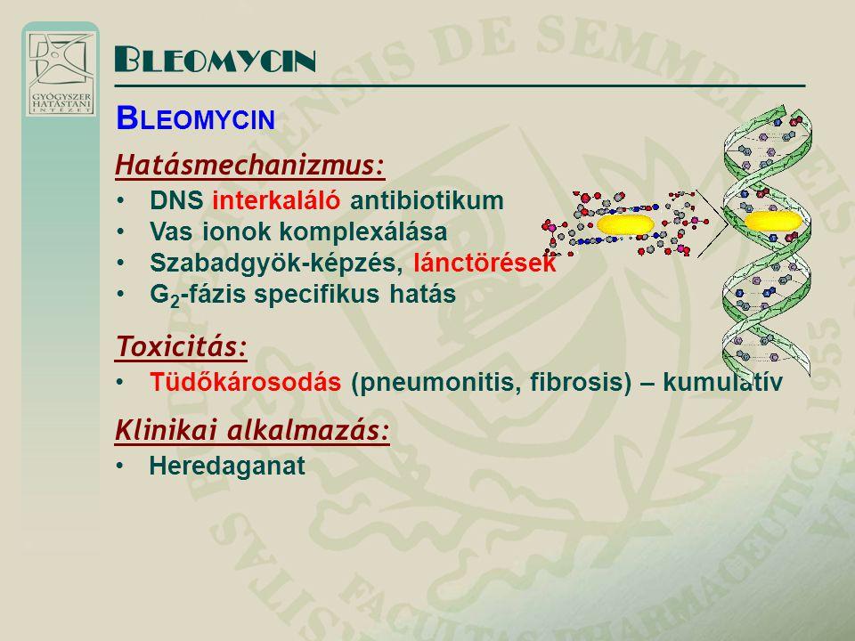 B LEOMYCIN Hatásmechanizmus: DNS interkaláló antibiotikum Vas ionok komplexálása Szabadgyök-képzés, lánctörések G 2 -fázis specifikus hatás B LEOMYCIN