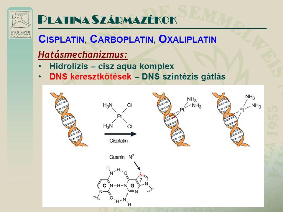 P LATINA S ZÁRMAZÉKOK Hatásmechanizmus: Hidrolízis – cisz aqua komplex DNS keresztkötések – DNS szintézis gátlás C ISPLATIN, C ARBOPLATIN, O XALIPLATI