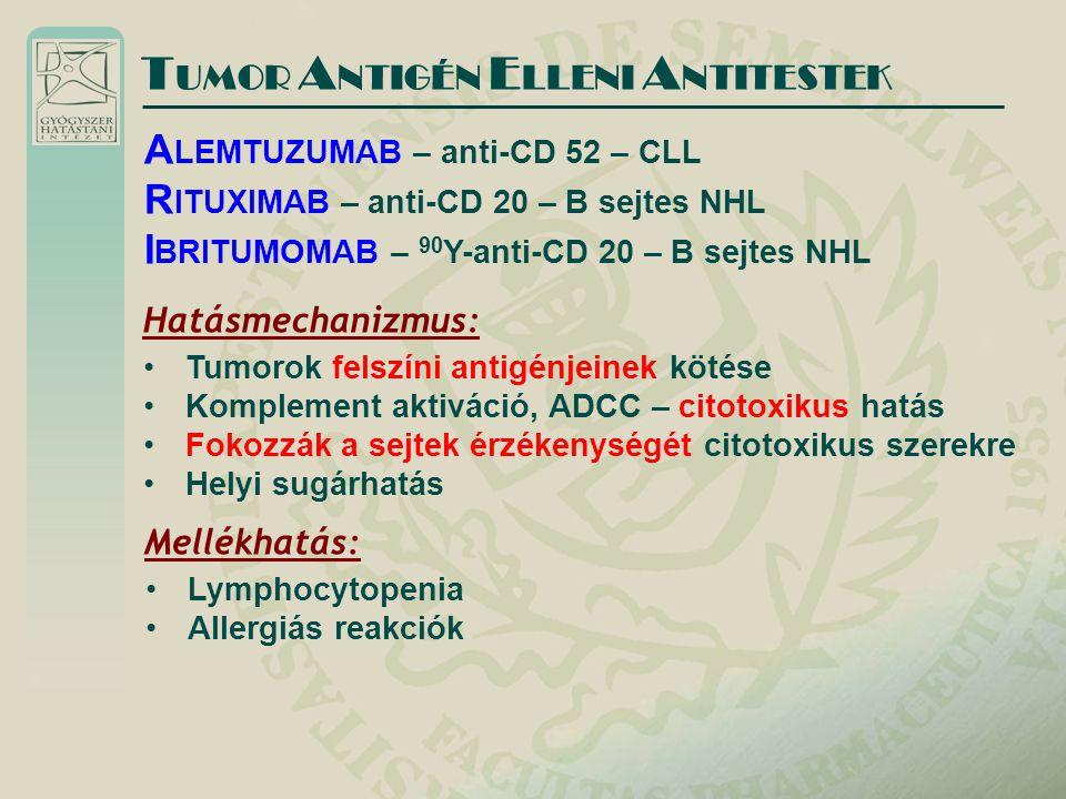 T UMOR A NTIGÉN E LLENI A NTITESTEK Hatásmechanizmus: Tumorok felszíni antigénjeinek kötése Komplement aktiváció, ADCC – citotoxikus hatás Fokozzák a