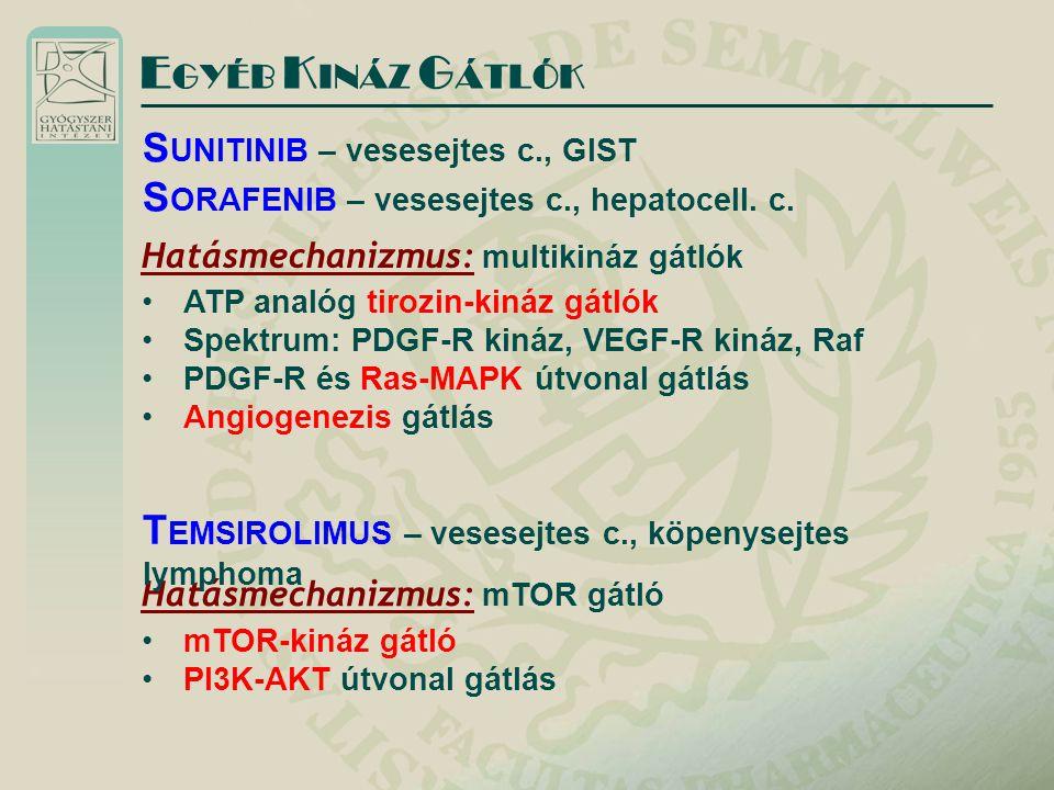 E GYÉB K INÁZ G ÁTLÓK Hatásmechanizmus: multikináz gátlók ATP analóg tirozin-kináz gátlók Spektrum: PDGF-R kináz, VEGF-R kináz, Raf PDGF-R és Ras-MAPK
