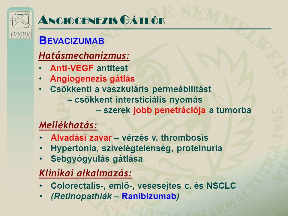 A NGIOGENEZIS G ÁTLÓK Hatásmechanizmus: Anti-VEGF antitest Angiogenezis gátlás Csökkenti a vaszkuláris permeábilitást – csökkent intersticiális nyomás