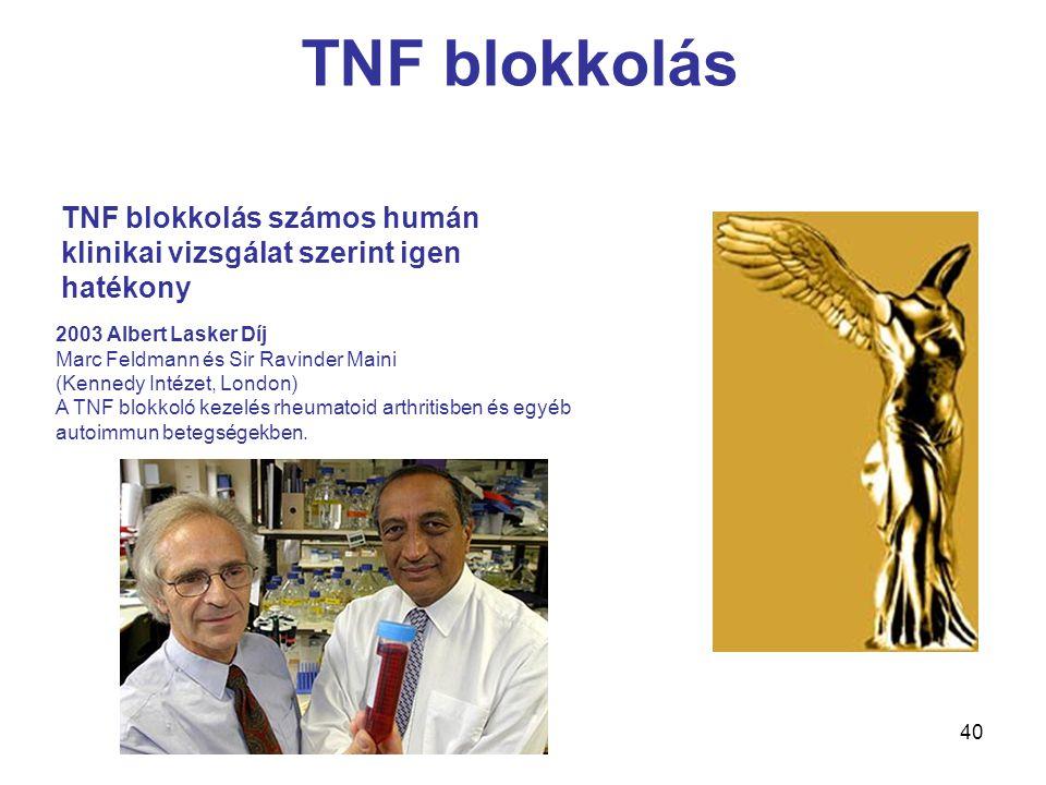 40 2003 Albert Lasker Díj Marc Feldmann és Sir Ravinder Maini (Kennedy Intézet, London) A TNF blokkoló kezelés rheumatoid arthritisben és egyéb autoimmun betegségekben.