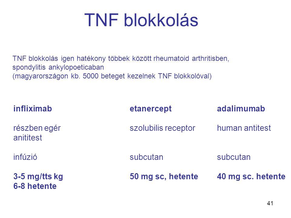 41 TNF blokkolás infliximabetanerceptadalimumab részben egérszolubilis receptorhuman antitest anititest infúziósubcutansubcutan 3-5 mg/tts kg50 mg sc, hetente40 mg sc.