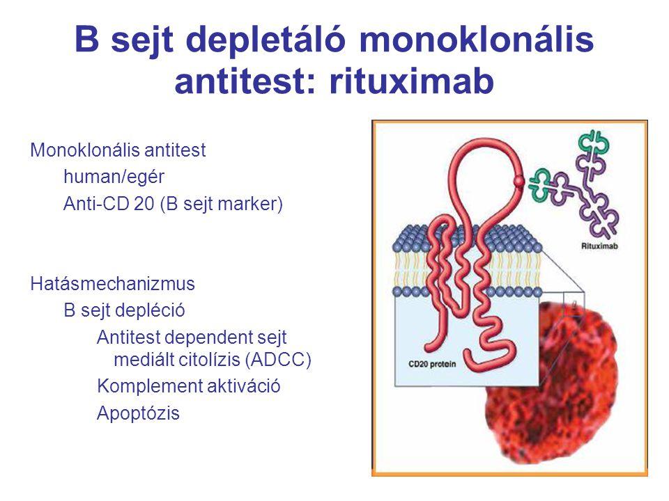 44 B sejt depletáló monoklonális antitest: rituximab Monoklonális antitest human/egér Anti-CD 20 (B sejt marker) Hatásmechanizmus B sejt depléció Antitest dependent sejt mediált citolízis (ADCC) Komplement aktiváció Apoptózis