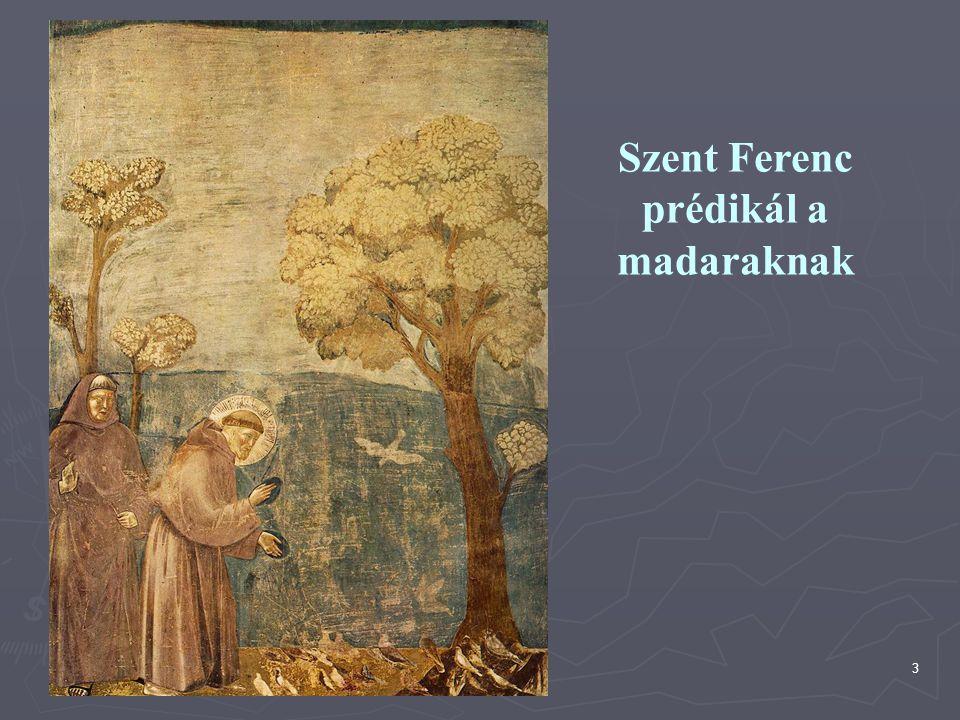 3 Szent Ferenc prédikál a madaraknak