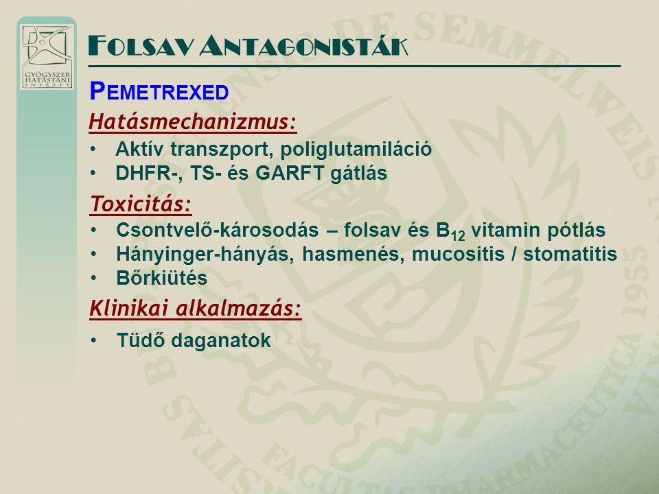 Hatásmechanizmus: Aktív transzport, poliglutamiláció DHFR-, TS- és GARFT gátlás F OLSAV A NTAGONISTÁK P EMETREXED Toxicitás: Csontvelő-károsodás – folsav és B 12 vitamin pótlás Hányinger-hányás, hasmenés, mucositis / stomatitis Bőrkiütés Klinikai alkalmazás: Tüdő daganatok