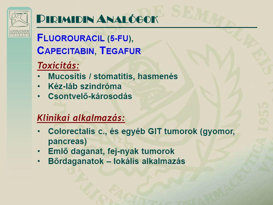 P IRIMIDIN A NALÓGOK F LUOROURACIL (5-FU), C APECITABIN, T EGAFUR Toxicitás: Mucositis / stomatitis, hasmenés Kéz-láb szindróma Csontvelő-károsodás Klinikai alkalmazás: Colorectalis c., és egyéb GIT tumorok (gyomor, pancreas) Emlő daganat, fej-nyak tumorok Bőrdaganatok – lokális alkalmazás