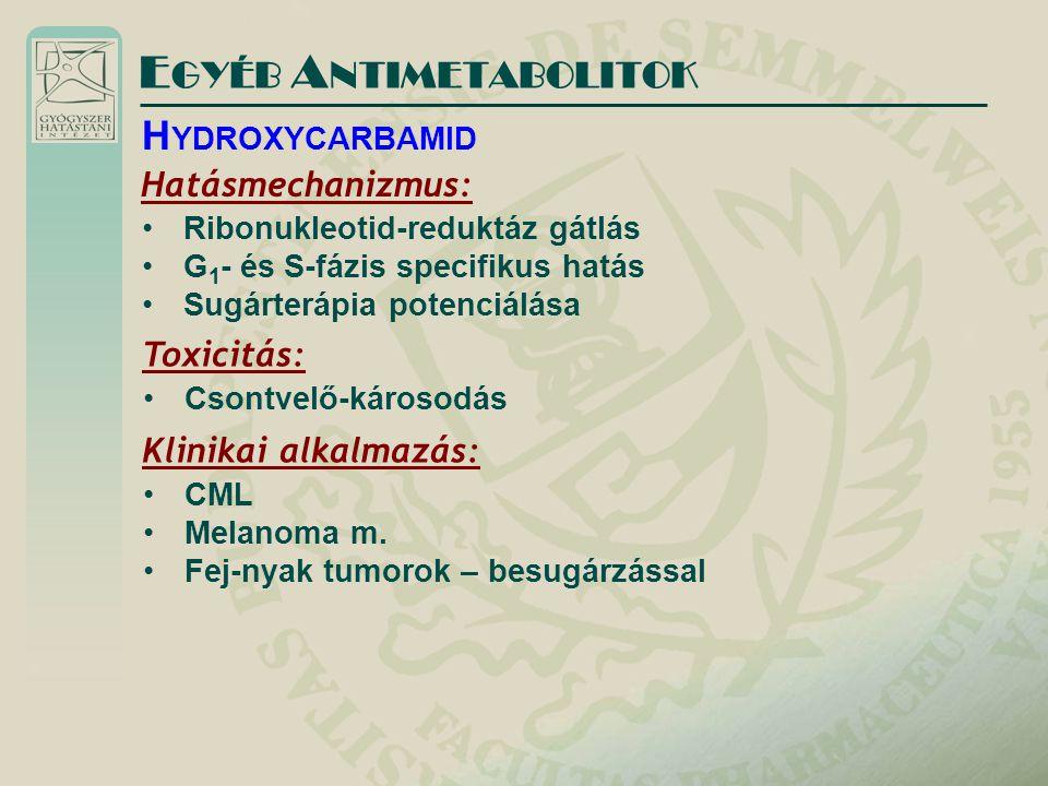 Hatásmechanizmus: Ribonukleotid-reduktáz gátlás G 1 - és S-fázis specifikus hatás Sugárterápia potenciálása E GYÉB A NTIMETABOLITOK H YDROXYCARBAMID Toxicitás: Csontvelő-károsodás Klinikai alkalmazás: CML Melanoma m.