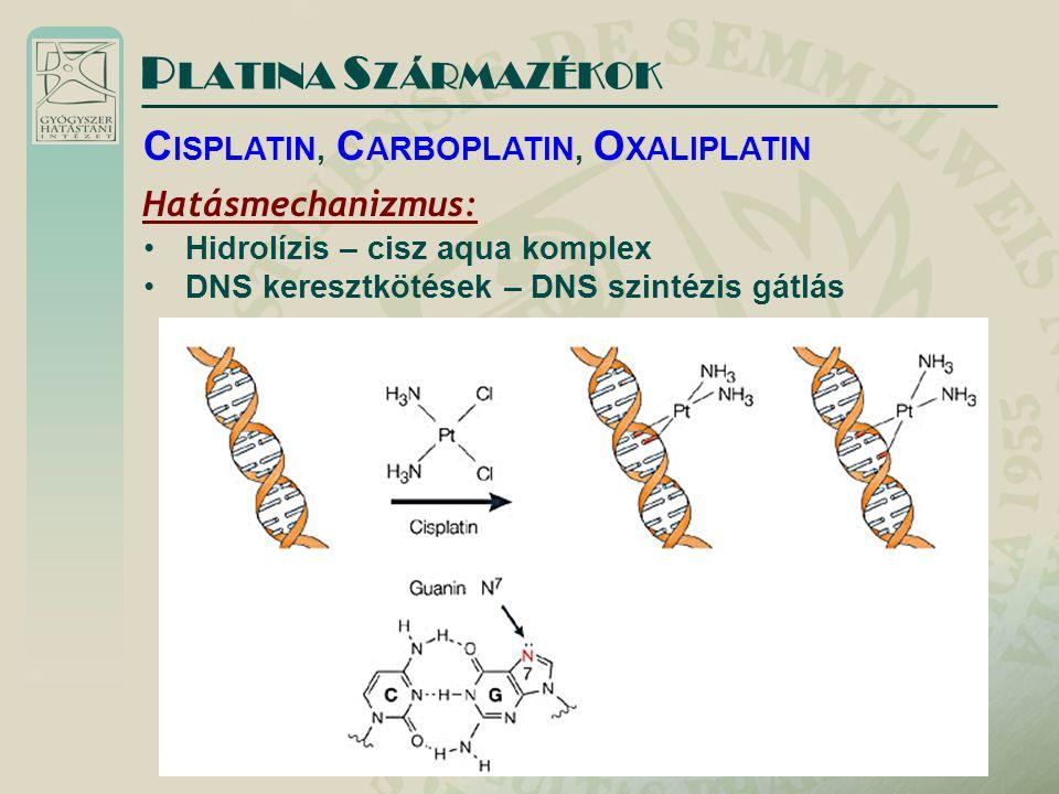P LATINA S ZÁRMAZÉKOK Hatásmechanizmus: Hidrolízis – cisz aqua komplex DNS keresztkötések – DNS szintézis gátlás C ISPLATIN, C ARBOPLATIN, O XALIPLATIN