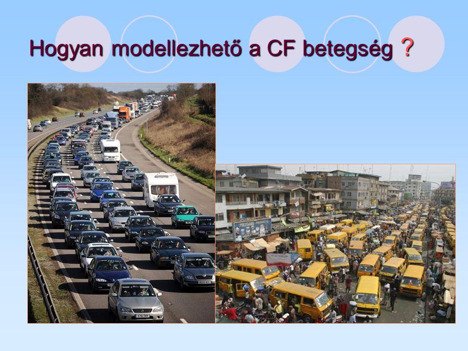 Hogyan modellezhető a CF betegség ?