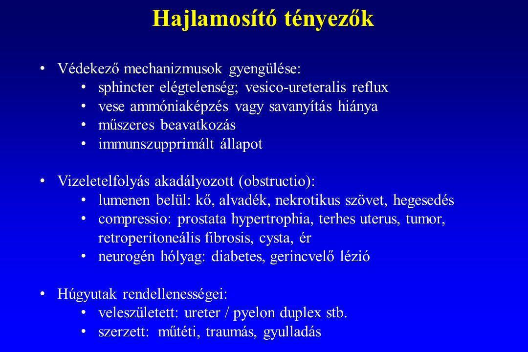 Védekező mechanizmusok gyengülése: Védekező mechanizmusok gyengülése: sphincter elégtelenség; vesico-ureteralis reflux sphincter elégtelenség; vesico-ureteralis reflux vese ammóniaképzés vagy savanyítás hiánya vese ammóniaképzés vagy savanyítás hiánya műszeres beavatkozás műszeres beavatkozás immunszupprimált állapot immunszupprimált állapot Vizeletelfolyás akadályozott (obstructio): Vizeletelfolyás akadályozott (obstructio): lumenen belül: kő, alvadék, nekrotikus szövet, hegesedés lumenen belül: kő, alvadék, nekrotikus szövet, hegesedés compressio: prostata hypertrophia, terhes uterus, tumor, retroperitoneális fibrosis, cysta, ér compressio: prostata hypertrophia, terhes uterus, tumor, retroperitoneális fibrosis, cysta, ér neurogén hólyag: diabetes, gerincvelő lézió neurogén hólyag: diabetes, gerincvelő lézió Húgyutak rendellenességei: Húgyutak rendellenességei: veleszületett: ureter / pyelon duplex stb.