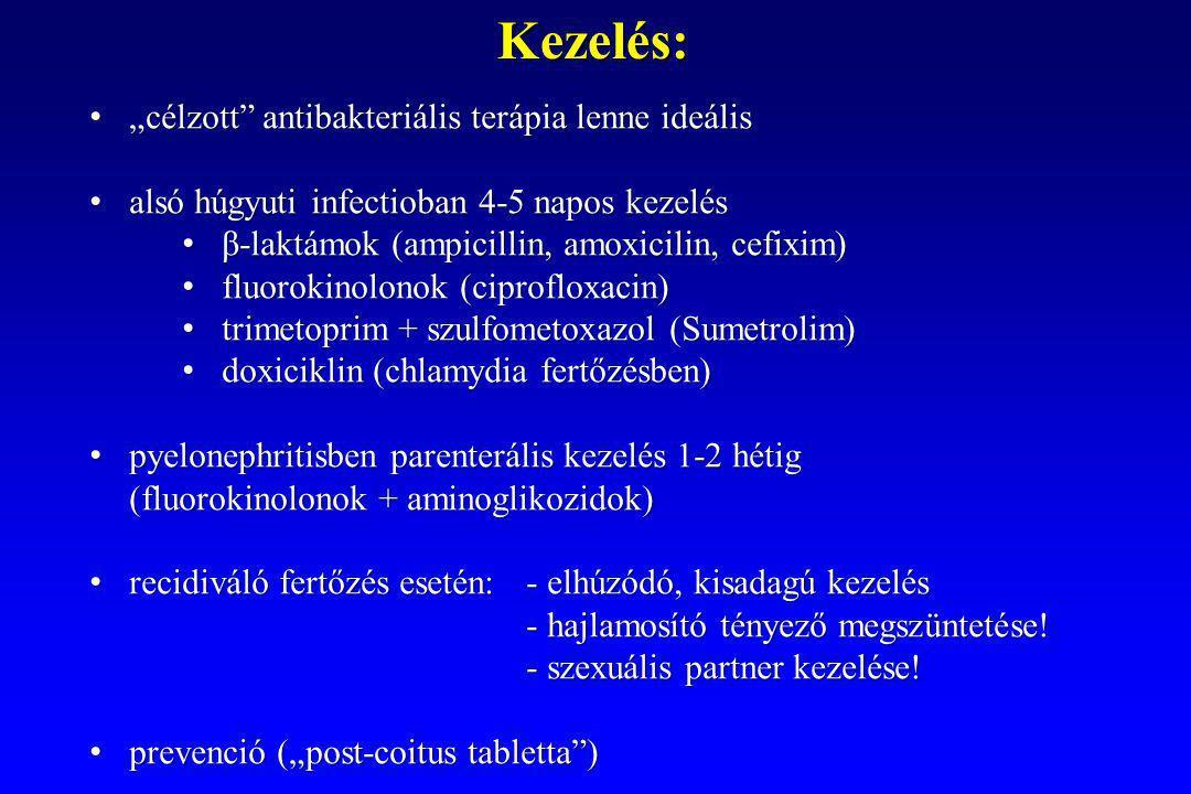 """""""célzott antibakteriális terápia lenne ideális """"célzott antibakteriális terápia lenne ideális alsó húgyuti infectioban 4-5 napos kezelés alsó húgyuti infectioban 4-5 napos kezelés β-laktámok (ampicillin, amoxicilin, cefixim) β-laktámok (ampicillin, amoxicilin, cefixim) fluorokinolonok (ciprofloxacin) fluorokinolonok (ciprofloxacin) trimetoprim + szulfometoxazol (Sumetrolim) trimetoprim + szulfometoxazol (Sumetrolim) doxiciklin (chlamydia fertőzésben) doxiciklin (chlamydia fertőzésben) pyelonephritisben parenterális kezelés 1-2 hétig (fluorokinolonok + aminoglikozidok) pyelonephritisben parenterális kezelés 1-2 hétig (fluorokinolonok + aminoglikozidok) recidiváló fertőzés esetén:- elhúzódó, kisadagú kezelés recidiváló fertőzés esetén:- elhúzódó, kisadagú kezelés - hajlamosító tényező megszüntetése."""