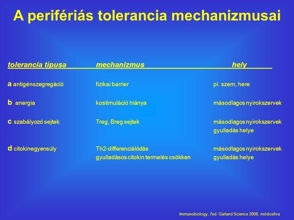 tolerancia típusamechanizmus hely a antigénszegregációfizikai barrierpl.