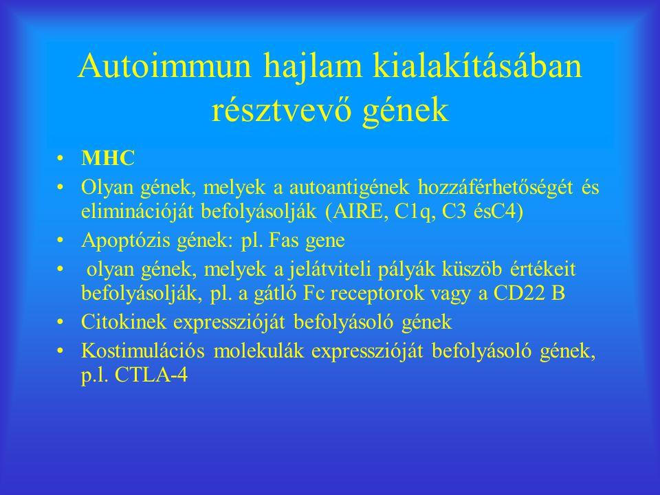 Autoimmun hajlam kialakításában résztvevő gének MHC Olyan gének, melyek a autoantigének hozzáférhetőségét és eliminációját befolyásolják (AIRE, C1q, C3 ésC4) Apoptózis gének: pl.