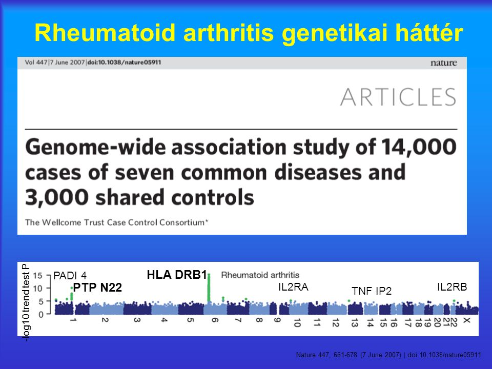 -log10 trend test P HLA DRB1 PTP N22 IL2RAIL2RB TNF IP2 PADI 4 Nature 447, 661-678 (7 June 2007) | doi:10.1038/nature05911 Rheumatoid arthritis genetikai háttér