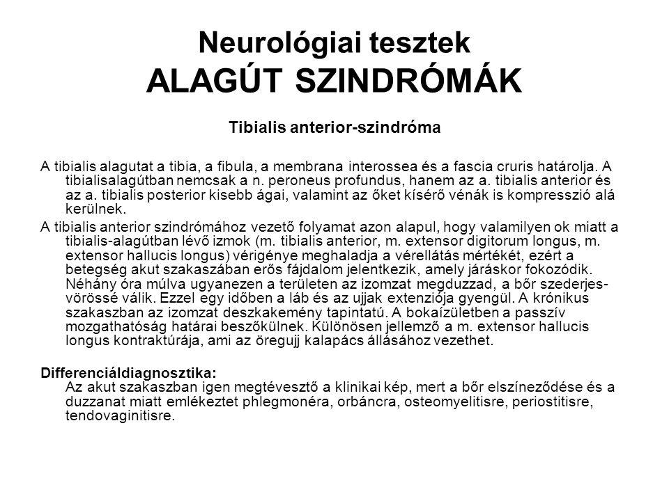 Neurológiai tesztek ALAGÚT SZINDRÓMÁK Tibialis anterior-szindróma A tibialis alagutat a tibia, a fibula, a membrana interossea és a fascia cruris hatá