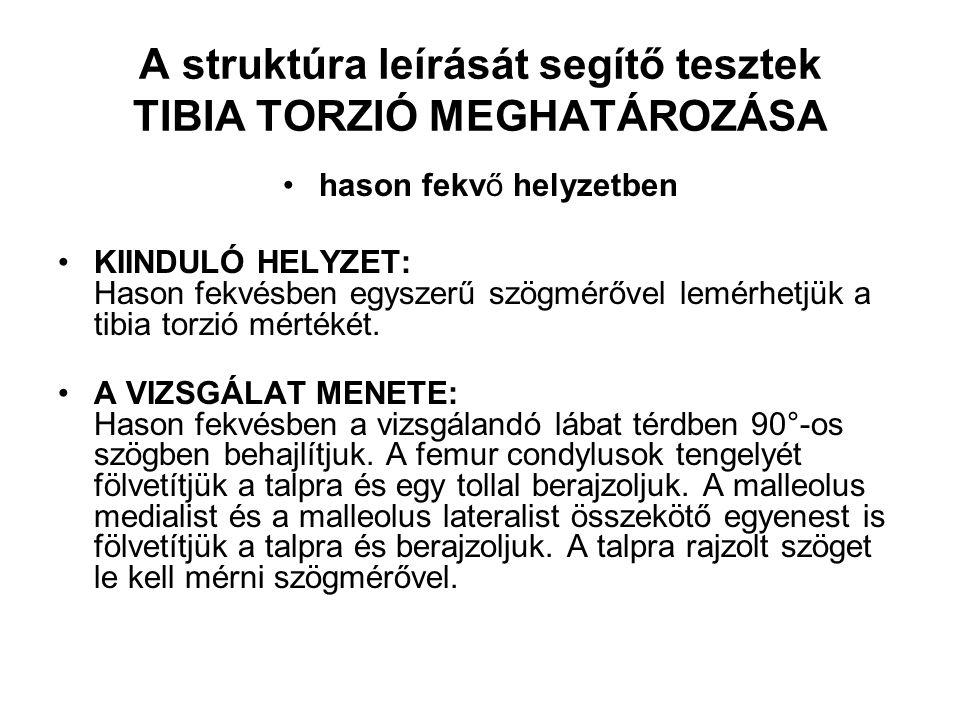 A struktúra leírását segítő tesztek TIBIA TORZIÓ MEGHATÁROZÁSA hason fekvő helyzetben KIINDULÓ HELYZET: Hason fekvésben egyszerű szögmérővel lemérhetj