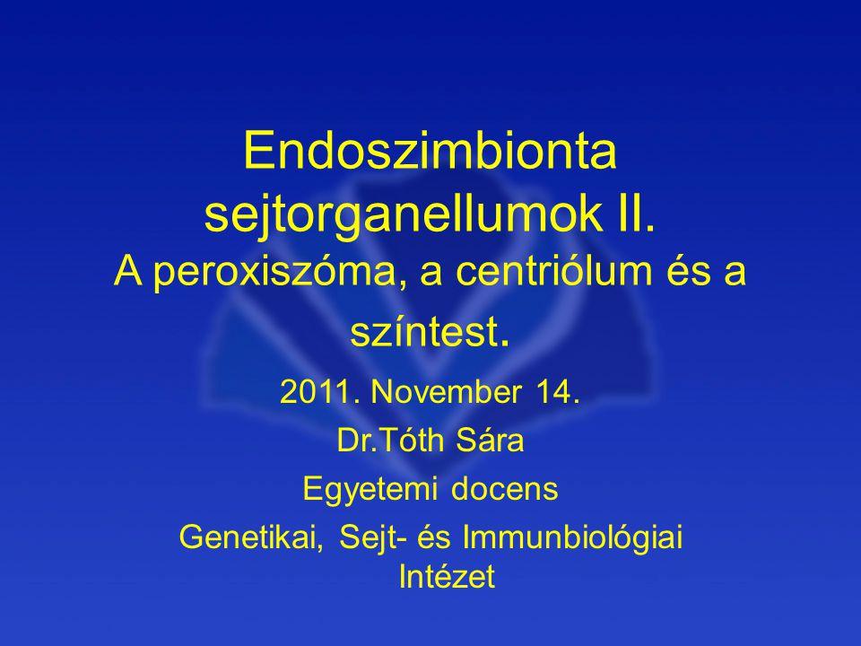 Endoszimbionta sejtorganellumok II.A peroxiszóma, a centriólum és a színtest.