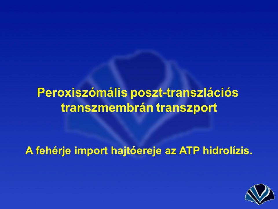 Peroxiszómális poszt-transzlációs transzmembrán transzport A fehérje import hajtóereje az ATP hidrolízis.