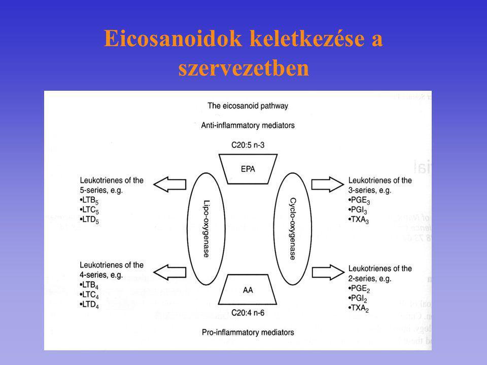 Eicosanoidok keletkezése a szervezetben