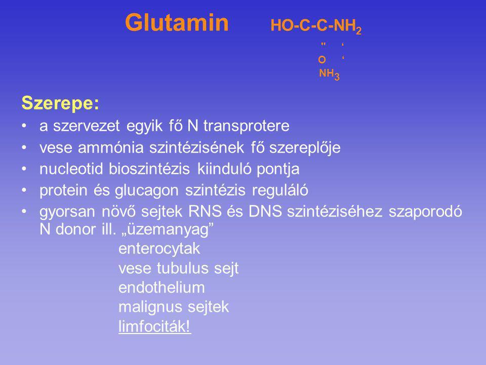 Glutamin HO-C-C-NH 2