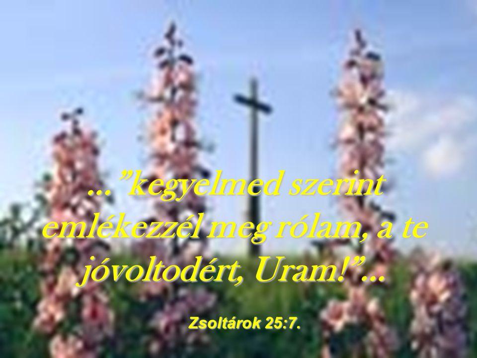 """…""""Mindig azon az úton járjatok, amelyet Én mutatok nektek, hogy jó dolgotok legyen!""""… Jeremiás könyve 7:23"""