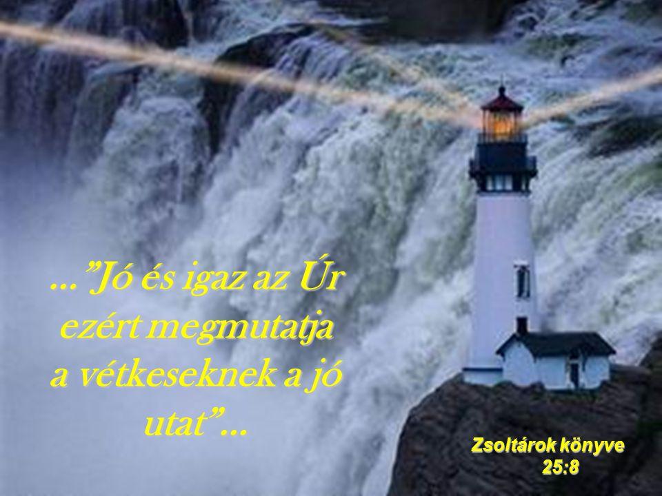 … Jó és igaz az Úr ezért megmutatja a vétkeseknek a jó utat … Zsoltárok könyve 25:8