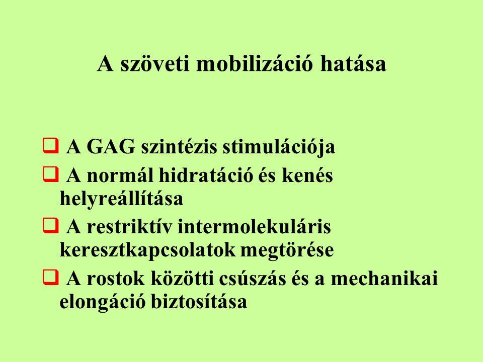 A szöveti mobilizáció hatása  A GAG szintézis stimulációja  A normál hidratáció és kenés helyreállítása  A restriktív intermolekuláris keresztkapcsolatok megtörése  A rostok közötti csúszás és a mechanikai elongáció biztosítása