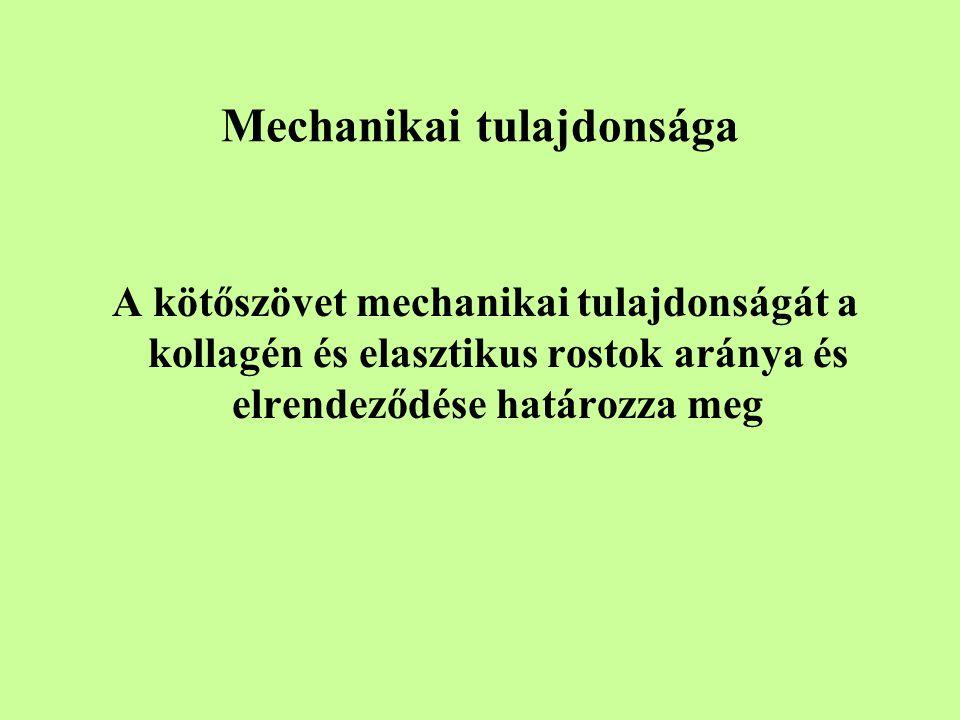 Mechanikai tulajdonsága A kötőszövet mechanikai tulajdonságát a kollagén és elasztikus rostok aránya és elrendeződése határozza meg