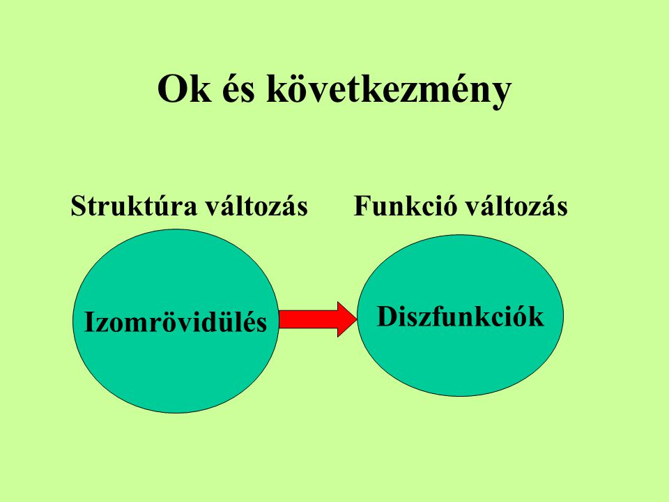 Viszkoelaszticitás az idő függvényében Hosszú ideig fenntartott erő hatására a kötőszövet megnyúlik /elongáció /, s a nyújtás során deformálódik.