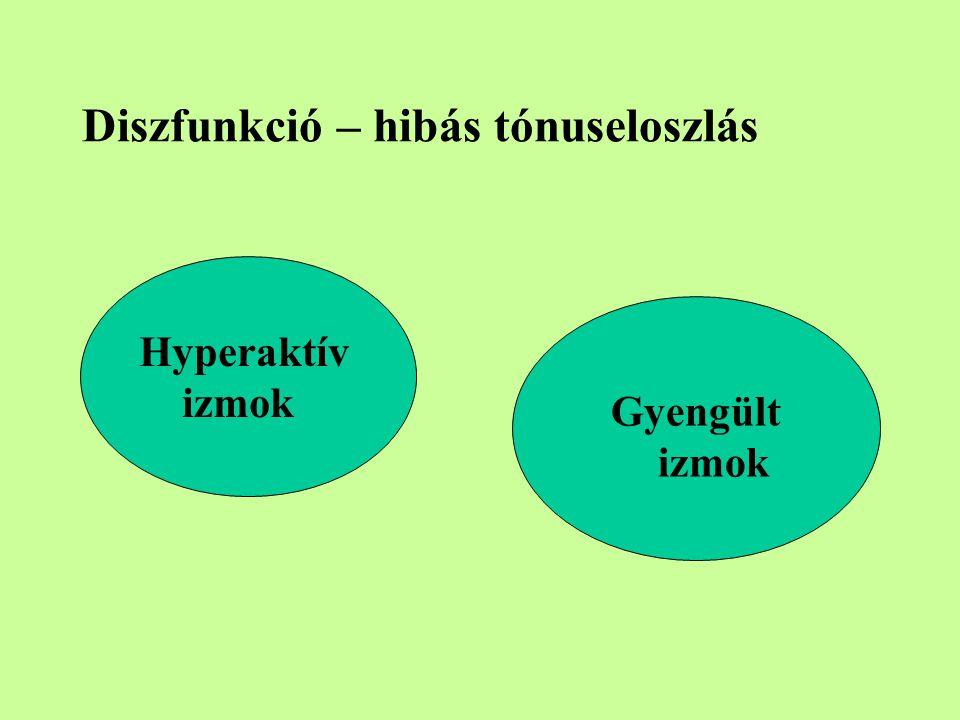 Diszfunkció – hibás tónuseloszlás Hyperaktív izmok Gyengült izmok