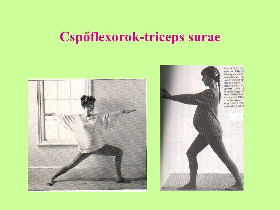 Cspőflexorok-triceps surae