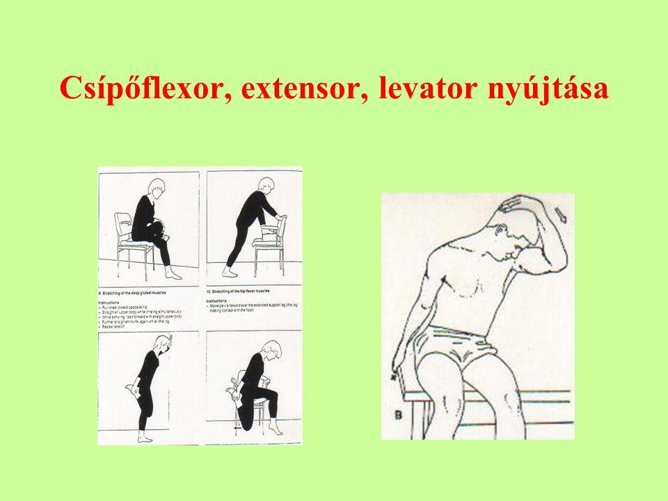 Csípőflexor, extensor, levator nyújtása