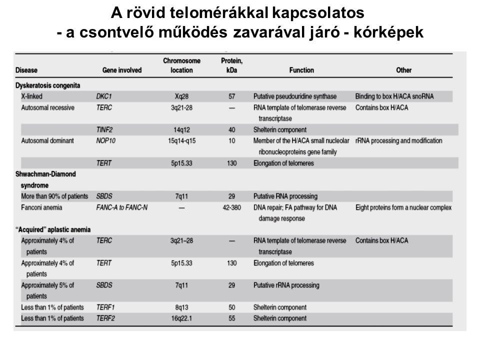 A rövid telomérákkal kapcsolatos - a csontvelő működés zavarával járó - kórképek