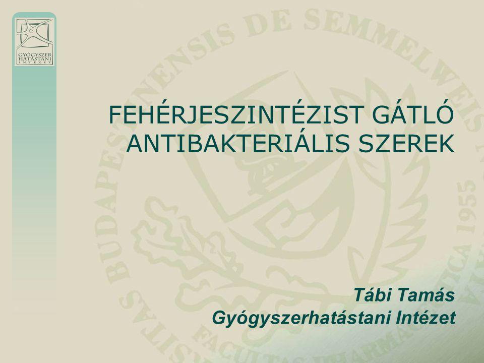 Tábi Tamás Gyógyszerhatástani Intézet FEHÉRJESZINTÉZIST GÁTLÓ ANTIBAKTERIÁLIS SZEREK