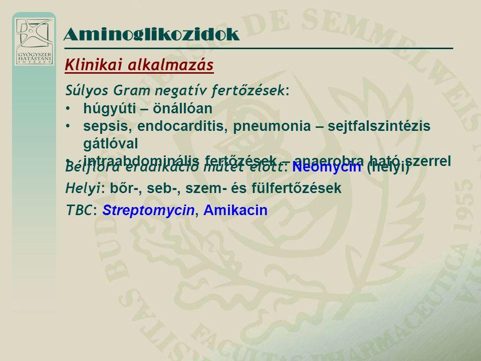 Klinikai alkalmazás Súlyos Gram negatív fertőzések : húgyúti – önállóan sepsis, endocarditis, pneumonia – sejtfalszintézis gátlóval intraabdominális f
