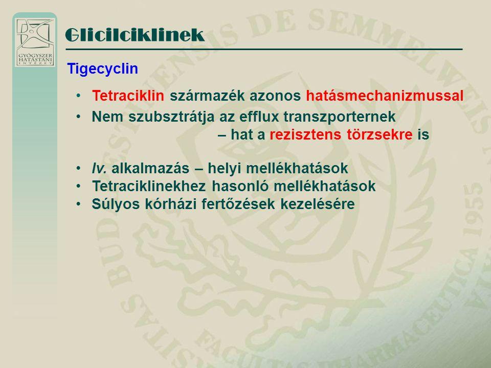 Glicilciklinek Tetraciklin származék azonos hatásmechanizmussal Nem szubsztrátja az efflux transzporternek – hat a rezisztens törzsekre is Tigecyclin